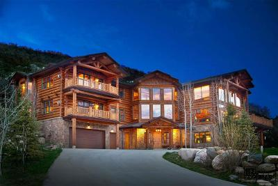 Steamboat Springs Single Family Home For Sale: 2600 Heavenly View