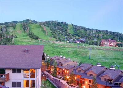 Steamboat Springs Condo/Townhouse For Sale: 2215 Storm Meadows Drive #500