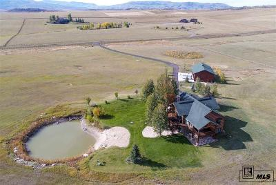 Steamboat Springs Single Family Home For Sale: 33355 Emerald Meadows Drive