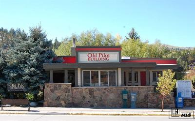 Steamboat Springs Commercial For Sale: 1041 Lincoln Ave