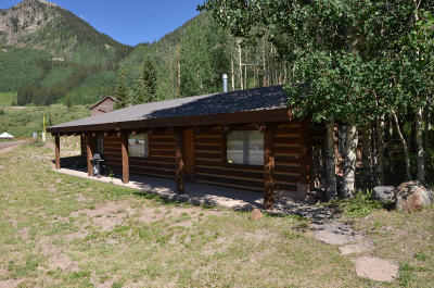 Telluride Single Family Home For Sale: 308 N Trout Lake Road