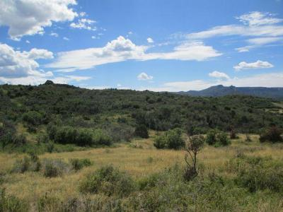 Dolores Residential Lots & Land For Sale: Tbd Aspen Road #57