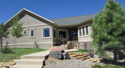Ridgway Single Family Home For Sale: 44 E Pinon