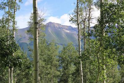 Telluride CO Residential Lots & Land For Sale: $430,000
