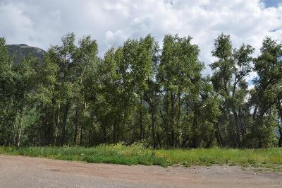 Rico Residential Lots & Land For Sale: 161718 Piedmont #S 20' 16