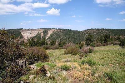Placerville CO Residential Lots & Land For Sale: $199,000