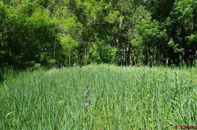 Ouray Residential Lots & Land For Sale: 1530 Oak