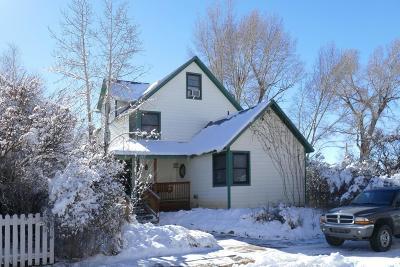 Norwood Single Family Home For Sale: 1340 Naturita Street