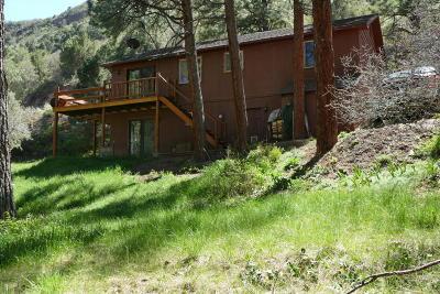 Ridgway Single Family Home For Sale: 336 Pine Ridge Drive