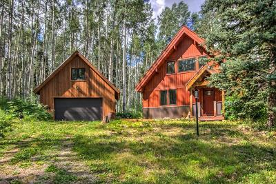 Placerville Single Family Home For Sale: 654 Woods Road,
