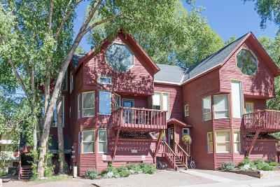 Telluride Condo/Townhouse For Sale: 103 S Davis Street #104