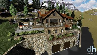 Telluride CO Single Family Home For Sale: $7,150,000