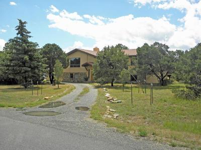 Ridgway Single Family Home For Sale: 1138 Ponderosa Drive