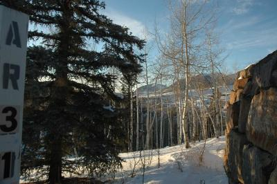 Mountain Village Residential Lots & Land For Sale