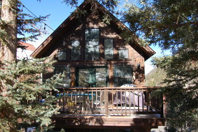 Telluride Single Family Home For Sale: 923 Two Rivers Drive