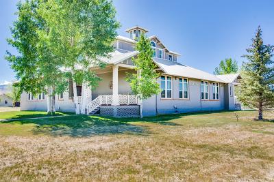 Montrose Single Family Home For Sale: 21049 Uncompahgre Road