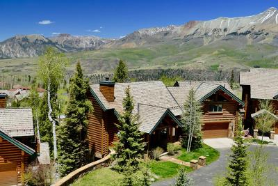 Mountain Village CO Single Family Home For Sale: $3,200,000