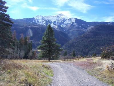 Ouray Residential Lots & Land For Sale: Tbd Cr 14 Road #Gay F Lo