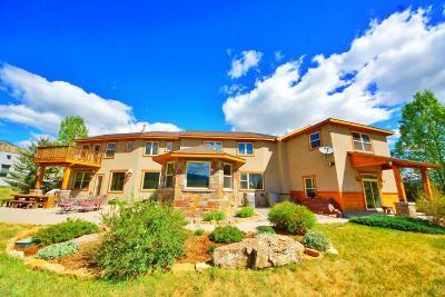 Ridgway Single Family Home For Sale: 604 Sabeta Drive