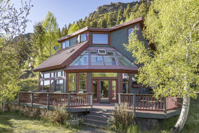 Telluride Single Family Home For Sale: 33 Hillside Lane