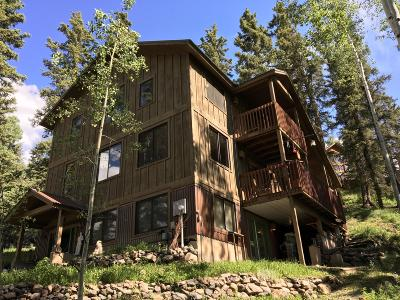 Telluride Single Family Home For Sale: 186 Alexander Overlook