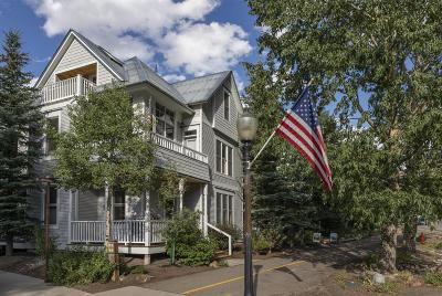 Telluride Condo/Townhouse For Sale: 629 W Colorado Avenue #A