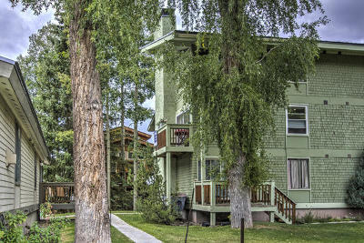 Telluride Condo/Townhouse For Sale: 619 W Columbia Avenue #126 & 12