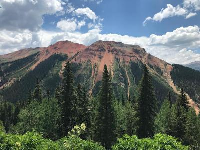Ouray Residential Lots & Land For Sale: Tbd County Road 20