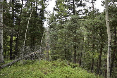 Ouray Residential Lots & Land For Sale: Tbd County Road 14