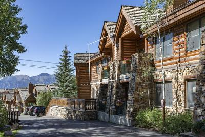Mountain Village CO Condo/Townhouse For Sale: $420,000