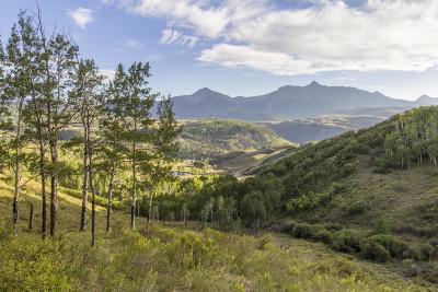 Telluride Residential Lots & Land For Sale: Tbd Aldasoro Boulevard #43