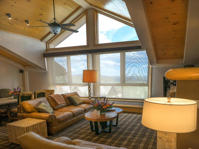 Mountain Village Fractional For Sale: 567 Mountain Village Boulevard #206-3