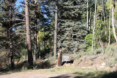 Ophir, Placerville Residential Lots & Land For Sale