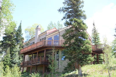 Mountain Village CO Condo/Townhouse For Sale: $2,200,000