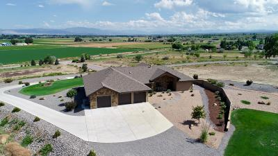 Montrose Single Family Home For Sale: 59387 Lone Eagle Road
