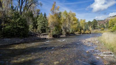 Placerville Residential Lots & Land For Sale: 143a Stock Road #E