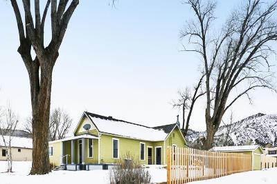 Ridgway Single Family Home For Sale: 121 S Charlotte Street