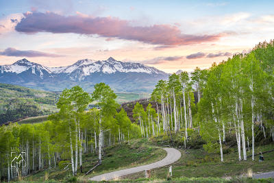 Telluride Residential Lots & Land For Sale: 177 Two Creeks Drive #2