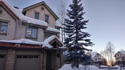 Mountain Village Fractional For Sale: 115 Aspen Ridge Drive #7