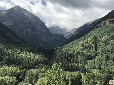 Telluride CO Single Family Home For Sale: $4,400,000
