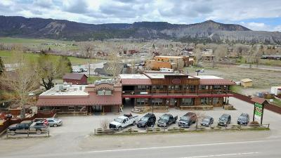 Ridgway Commercial For Sale: 153 Us-550