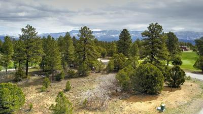 Ridgway Residential Lots & Land For Sale: Tbd Marmot Drive #V307
