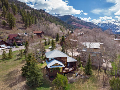 Telluride CO Single Family Home For Sale: $1,450,000