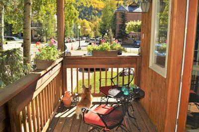 Telluride Condo/Townhouse For Sale: 619 W Columbia Avenue #c-112