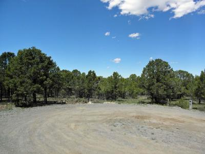 Ridgway Residential Lots & Land For Sale: Tbd N Tower Road #4