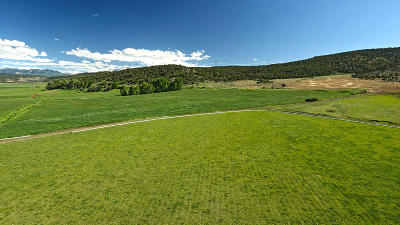 Montrose Residential Lots & Land For Sale: Tbd S Hwy 550