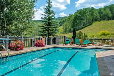 Beaver Creek Condo/Townhouse For Sale: 205 Bear Paw #C304