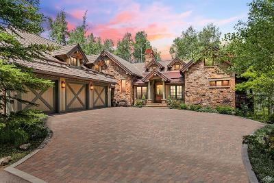 Edwards Single Family Home For Sale: 525 Forest Trail
