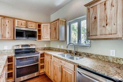 Avon Single Family Home For Sale: 13 Eagle Drive #D