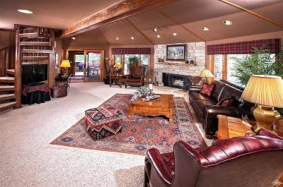Vail Single Family Home For Sale: 5124 Grouse Lane